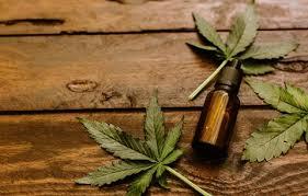 Cannabis-Konzentrat Marktbericht zu beeindruckendem Wachstum, Produktion, Verkaufsfläche, Bruttomarge, Umsatzanalyse Prognose 2025