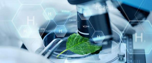 EPO Biomarkers Market 2019 Globale Analyse,Forschung,Review,Anwendungen und Prognose bis 2023