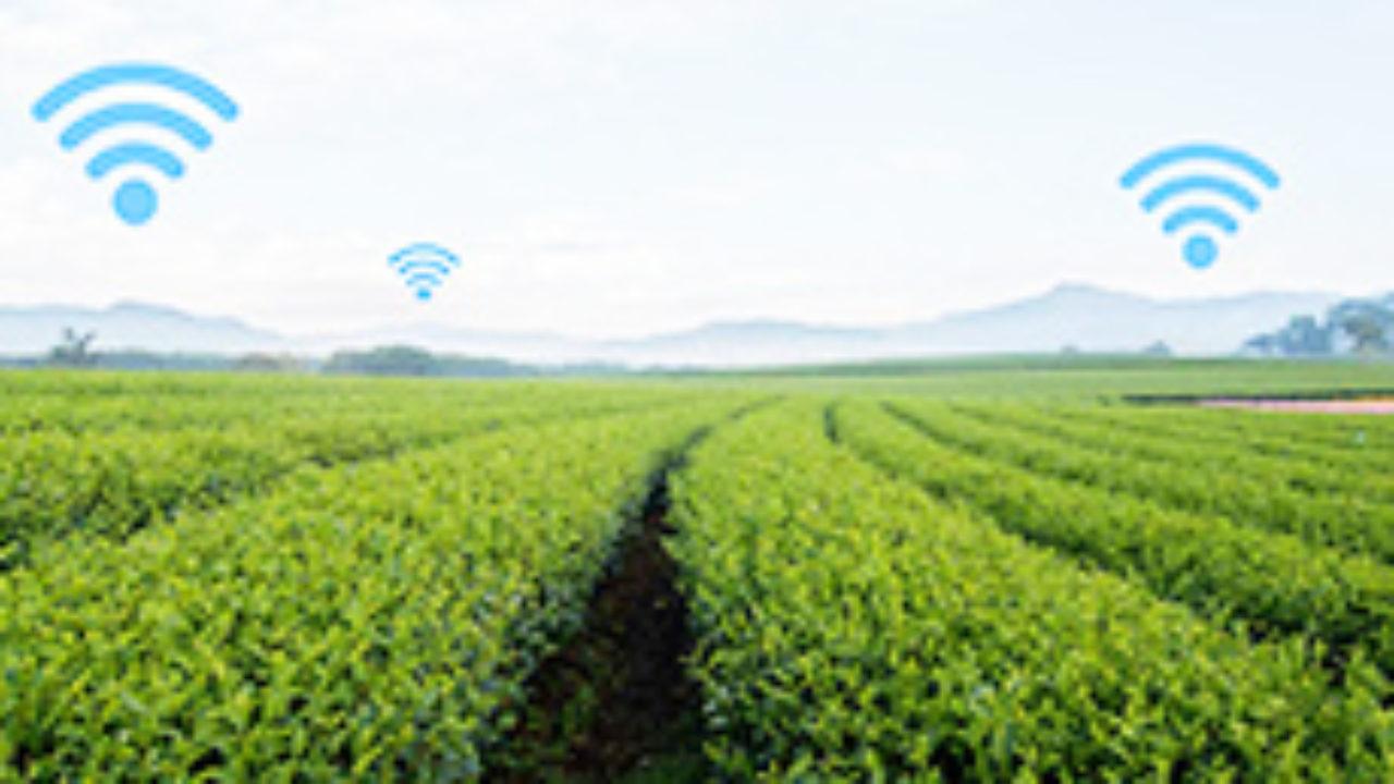 Markt für intelligente Landwirtschaftssensoren - Globales Branchenwachstum und Prognose 2026