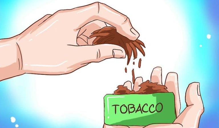 Globaler Bio-TabakmarktStatus, Größe, Wachstum Wichtige Hersteller Einführung und Marktdaten 2019-2025